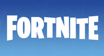 More Fortnite Products