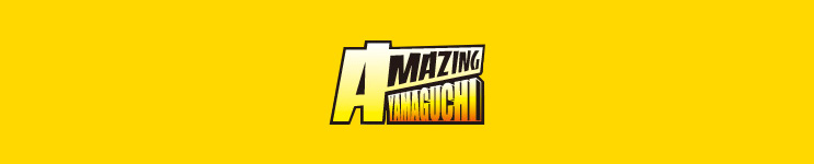 Amazing Yamaguchi Toys, Action Figures, Statues, Collectibles, and More!